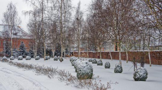 Zimowa aura w naszym otoczeniu